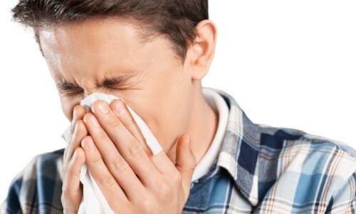 allergy Chad's AC